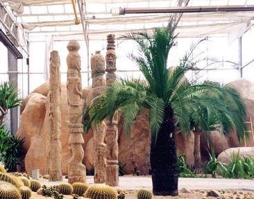 天津热带植物观光园天气